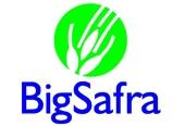 Big Safra